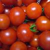雨の日トマト