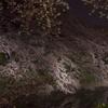 千鳥が淵 2009.04.02