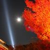 紅葉と月の共演