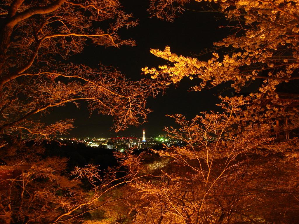 ちっちゃい京都タワー