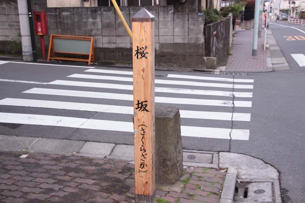 桜坂その3
