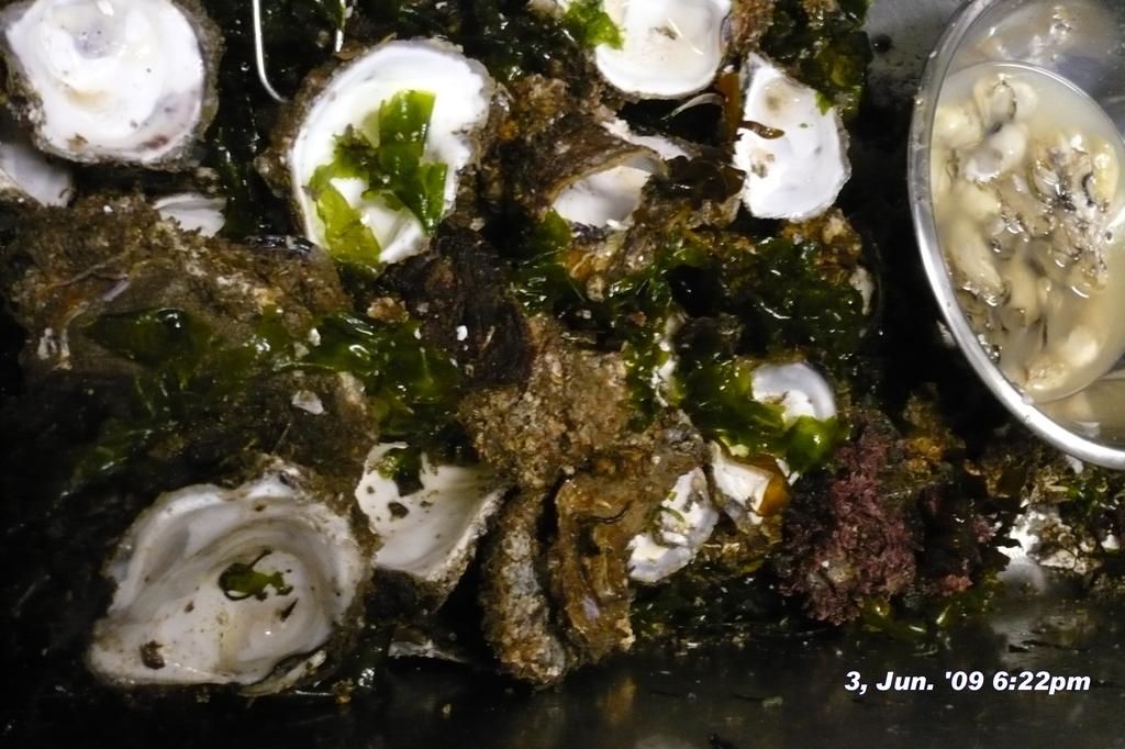 090603-182236内野の岩牡蠣