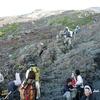 富士山アタック黒鳥隊。宿泊する東洋館脇から見る山頂方面。一瞬の晴れ間。10072