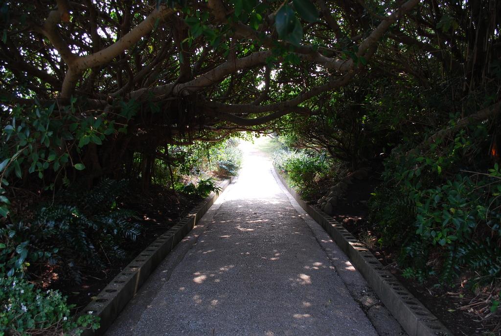 トンネルの、、