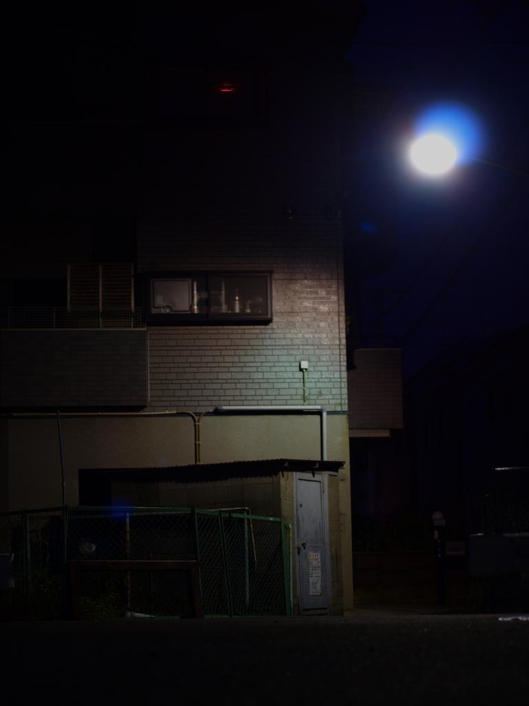 街灯に照らされて