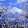 桜に包まれて-02