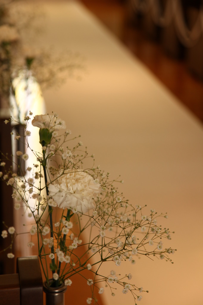 A Image for wedding reception -longroad