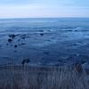 日本海はやはり寒かった