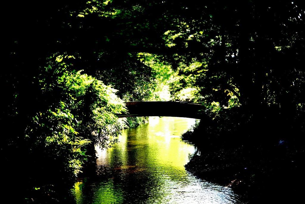 小さな橋。