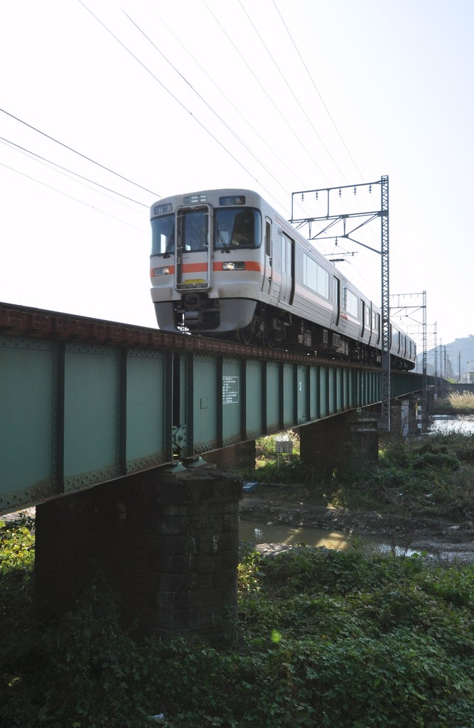 313系・鉄橋渡る