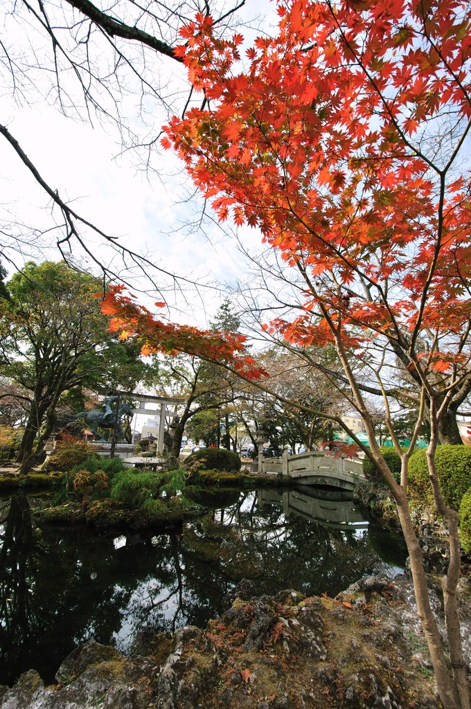 日本の紅葉