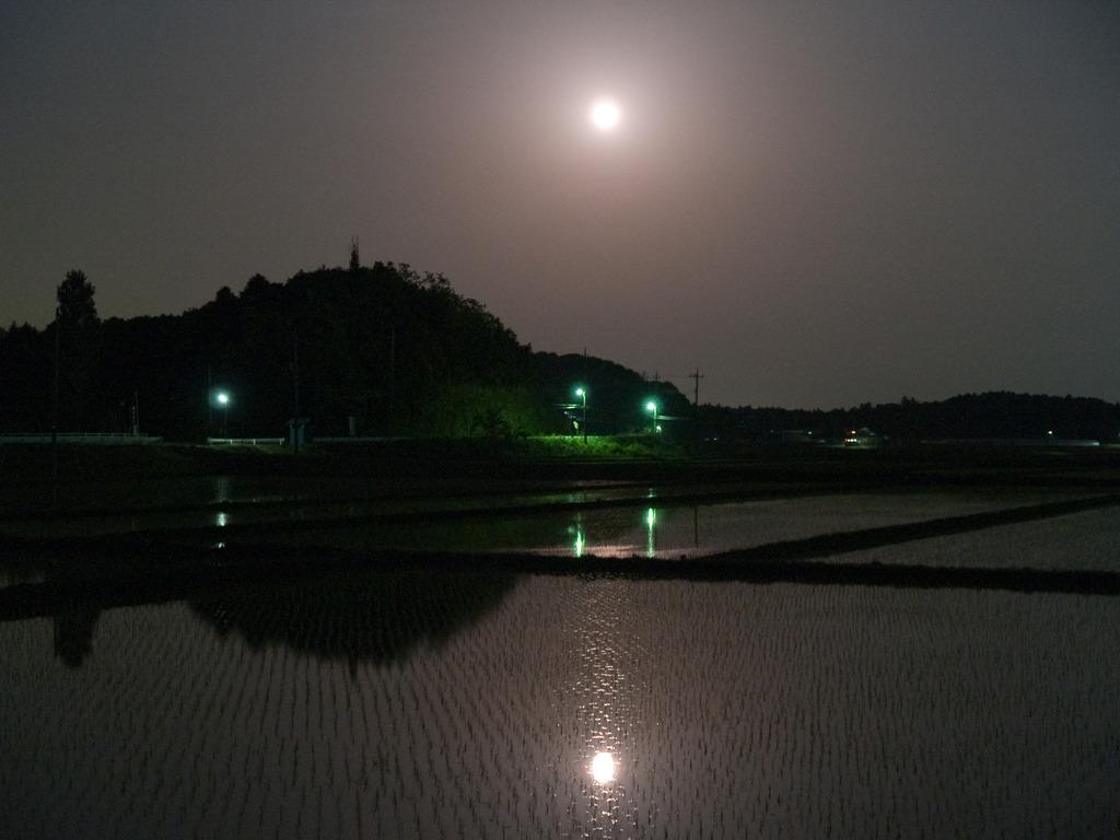 明るすぎる満月