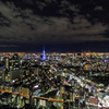 "Tokyo ""Blue"" Tower"