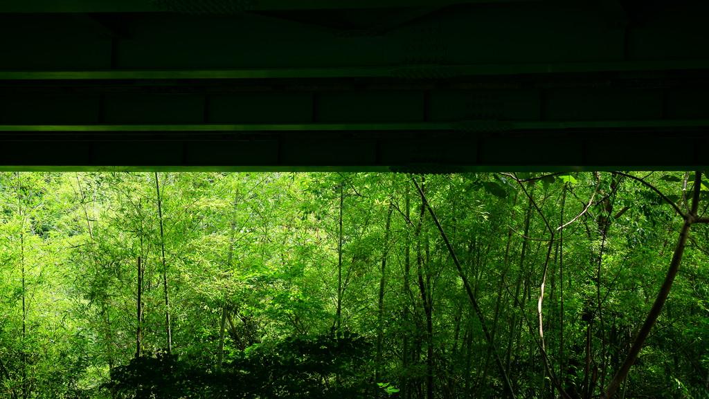 高架下の風景