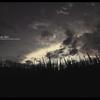 夕刻の影。