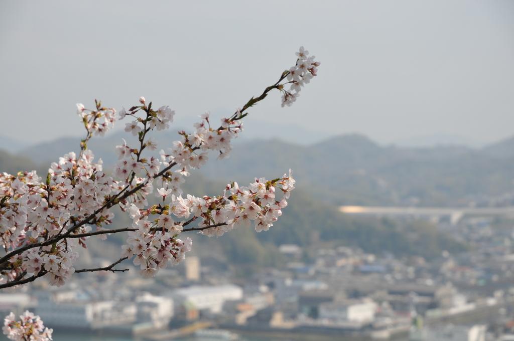 尾道~千光寺公園