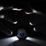SONY ILCE-7Rで撮影した(夢の国は夢のままで)の写真(画像)