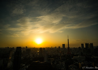 SONY ILCE-7RM2で撮影した(☆東京の夕景☆)の写真(画像)