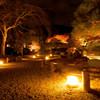 高台寺 灯篭の道