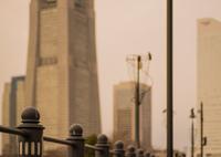 SONY ILCE-7RM2で撮影した(冬の夕暮れ時)の写真(画像)