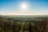 霧晴れの朝