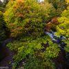 滝見橋の秋と釣り人