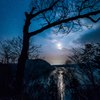 月明かり、光の道