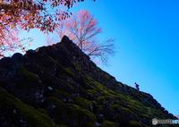SONY NEX-F3で撮影した(古城の秋)の写真(画像)