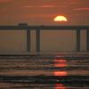 香港后海湾の日没