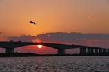 浜名大橋の落日