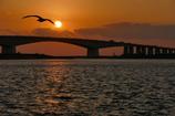 浜名大橋の夕暮れ
