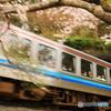 桜と三江線