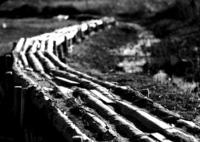 OLYMPUS E-P5で撮影した(木道)の写真(画像)