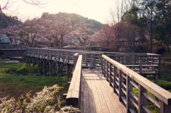 古九谷の杜親水公園3