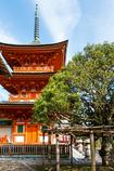 宝厳寺三重塔ともちの木(琵琶湖に浮かぶ竹生島より)