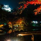 錦秋の彦根城借景2(玄宮園より)