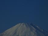 初夢に「大」富士をどうぞ