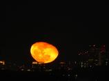 都会の月の出