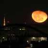 東京タワーと月の出