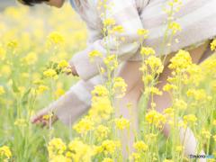 春の野に出でて若菜摘む♪