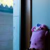 窓際の黄昏