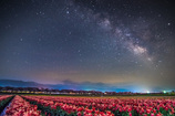 Spring Milky Way