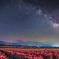 Spring Milky Way