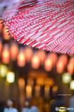 春に和傘*