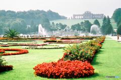 シェーンブルン宮殿 庭