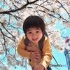 息子と桜2007