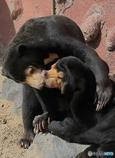 熱烈な接吻