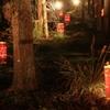 長神の杜 ~京都・嵐山花灯路Ⅵ~
