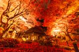 晩秋の教林坊
