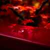 赤い橋の紅い影